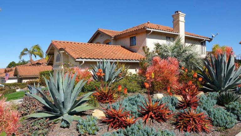 21 Best Desert Landscape Ideas in 2020