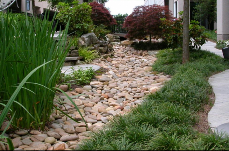 Riverbed Landscaping Ideas