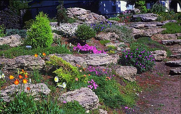 Rock Garden Terraces