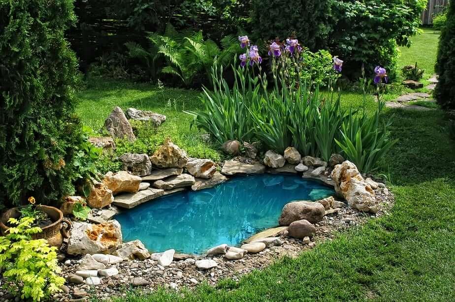 Tiny Watering Hole